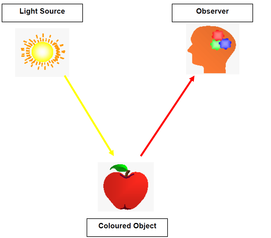 Elements which cause the colour stimulus